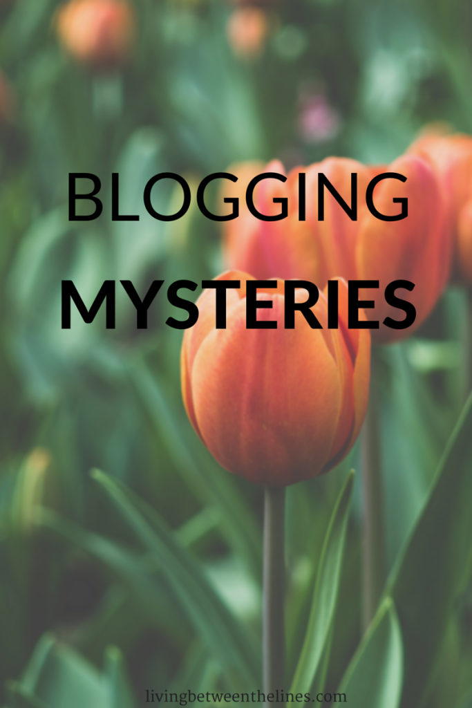 After a few months, there are some things I just can't understand about blogging.