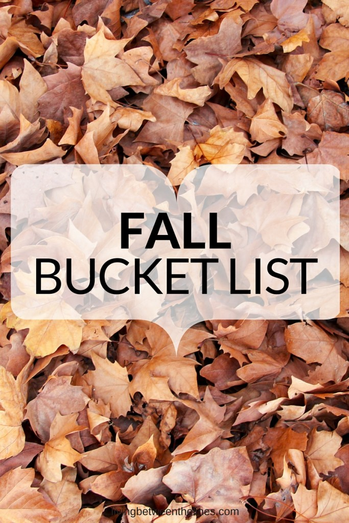 Make the most of the season with this list of can't-miss fall activities!